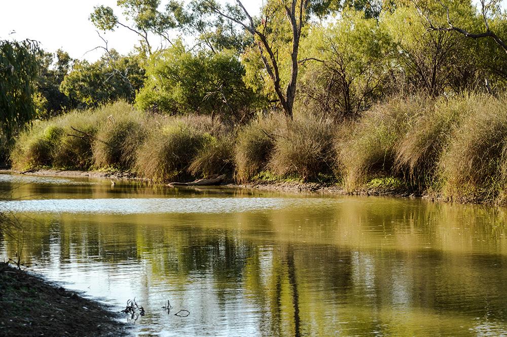 Isisford - Yuranigh Pond